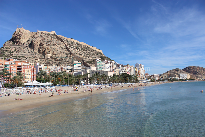 Alicante Spain  city pictures gallery : Pin Alicante Spain on Pinterest