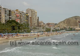 Beach along the hotel
